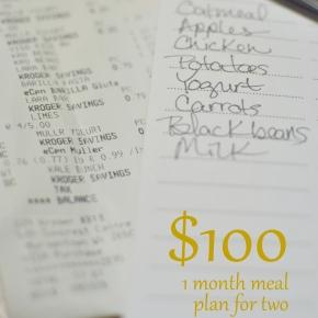 $100 a month mealplan