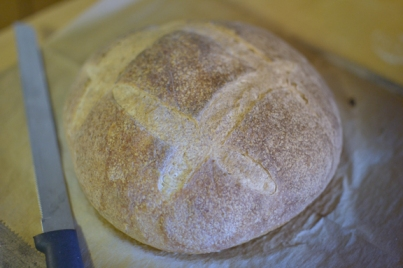 Homemade Sourdough Boule