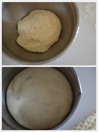 Sourdough bread first rise