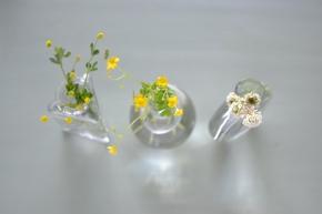 Friday photo: Weeds,shmeeds